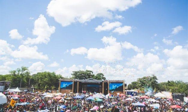 Het festival overzicht 2014